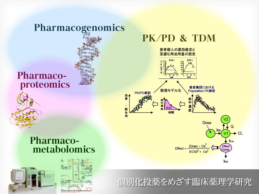 慶應義塾大学医学部 臨床薬剤学教室は、個別化投薬を目指す臨床薬理学研究を行っています